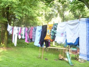 Ever since our dryer broke, Susie's been hanging laundry on the front yard of our Patterson Ave home, could this be the problem?