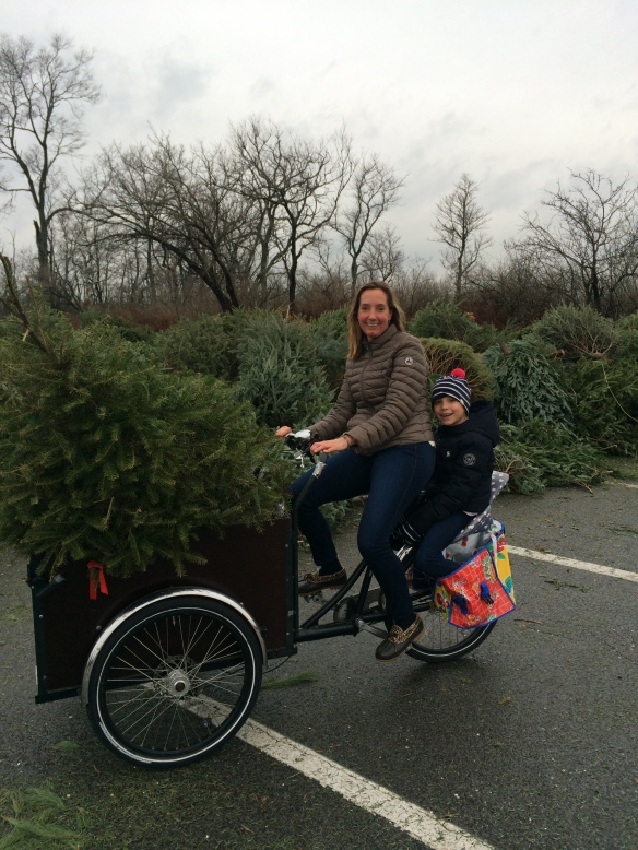 Broker Daphne Lamsvelt-Pol (and progeny) showing us the other way to haul a tree to The Point...